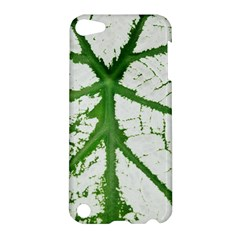Leaf Patterns Apple Ipod Touch 5 Hardshell Case by natureinmalaysia