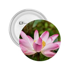 A Pink Lotus 2 25  Button by natureinmalaysia