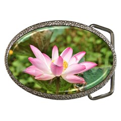A Pink Lotus Belt Buckle (oval) by natureinmalaysia