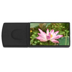 A Pink Lotus 4gb Usb Flash Drive (rectangle) by natureinmalaysia