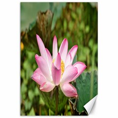 A Pink Lotus Canvas 12  X 18  (unframed) by natureinmalaysia