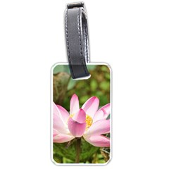 A Pink Lotus Luggage Tag (one Side) by natureinmalaysia