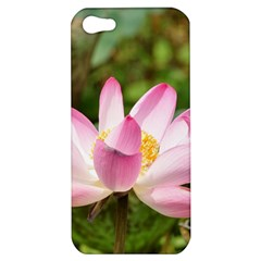 A Pink Lotus Apple Iphone 5 Hardshell Case by natureinmalaysia