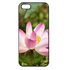 A Pink Lotus Apple Iphone 5 Seamless Case (black) by natureinmalaysia