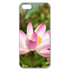A Pink Lotus Apple Seamless Iphone 5 Case (clear) by natureinmalaysia
