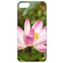 A Pink Lotus Apple Iphone 5 Classic Hardshell Case by natureinmalaysia