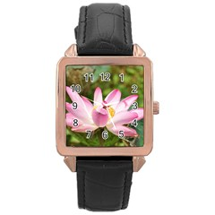 A Pink Lotus Rose Gold Leather Watch  by natureinmalaysia
