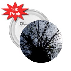 An Old Tree 2 25  Button (100 Pack) by natureinmalaysia