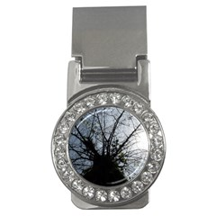 An Old Tree Money Clip (cz)