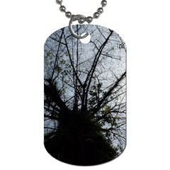 An Old Tree Dog Tag (one Sided)
