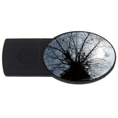 An Old Tree 4gb Usb Flash Drive (oval) by natureinmalaysia