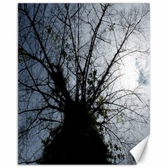 An Old Tree Canvas 16  X 20  (unframed) by natureinmalaysia