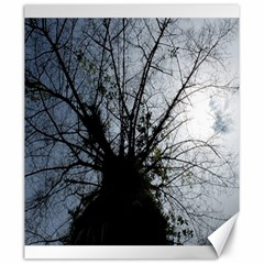 An Old Tree Canvas 20  X 24  (unframed) by natureinmalaysia