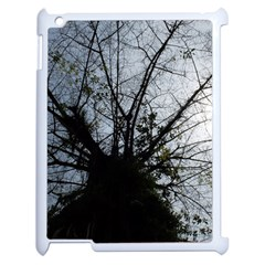 An Old Tree Apple Ipad 2 Case (white) by natureinmalaysia