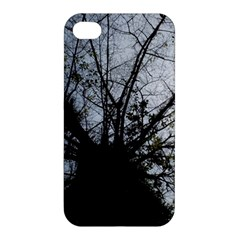 An Old Tree Apple Iphone 4/4s Premium Hardshell Case by natureinmalaysia