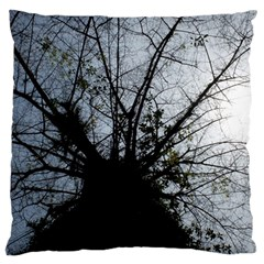 An Old Tree Large Cushion Case (one Side) by natureinmalaysia