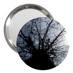 An Old Tree 3  Handbag Mirror by natureinmalaysia
