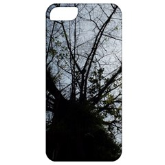 An Old Tree Apple Iphone 5 Classic Hardshell Case by natureinmalaysia