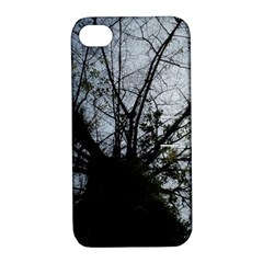 An Old Tree Apple Iphone 4/4s Hardshell Case With Stand by natureinmalaysia