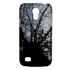 An Old Tree Samsung Galaxy S4 Mini Hardshell Case  by natureinmalaysia