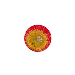 A Red Flower 1  Mini Button Magnet by natureinmalaysia