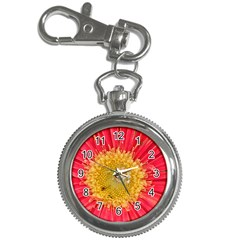 A Red Flower Key Chain & Watch by natureinmalaysia
