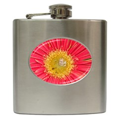A Red Flower Hip Flask by natureinmalaysia