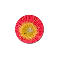 A Red Flower Golf Ball Marker 4 Pack by natureinmalaysia