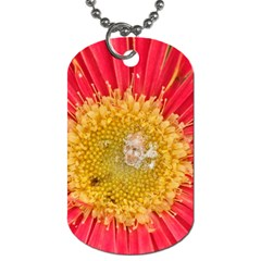 A Red Flower Dog Tag (two Sided)  by natureinmalaysia
