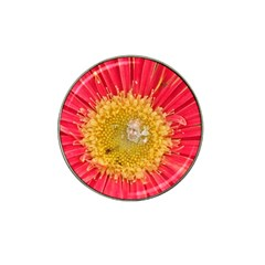 A Red Flower Golf Ball Marker (for Hat Clip) by natureinmalaysia