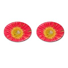 A Red Flower Cufflinks (oval) by natureinmalaysia