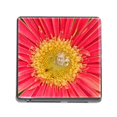 A Red Flower Memory Card Reader With Storage (square) by natureinmalaysia