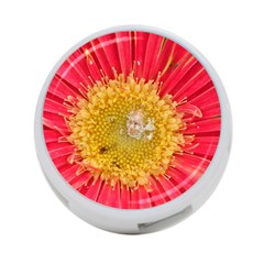 A Red Flower 4 Port Usb Hub (one Side) by natureinmalaysia