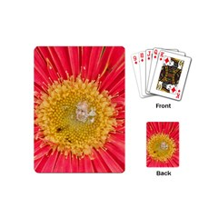 A Red Flower Playing Cards (mini) by natureinmalaysia