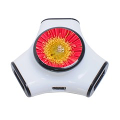 A Red Flower 3 Port Usb Hub by natureinmalaysia