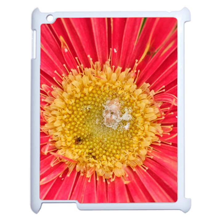 A Red Flower Apple iPad 2 Case (White)