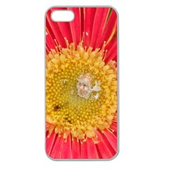 A Red Flower Apple Seamless Iphone 5 Case (clear) by natureinmalaysia