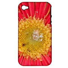 A Red Flower Apple Iphone 4/4s Hardshell Case (pc+silicone) by natureinmalaysia