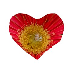 A Red Flower 16  Premium Heart Shape Cushion  by natureinmalaysia