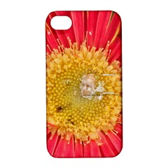 A Red Flower Apple Iphone 4/4s Hardshell Case With Stand