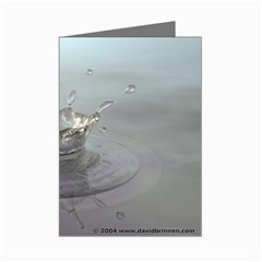 4159 Mini Greeting Cards (Pkg of 8) by sophie