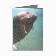 bronx zoo 060 Mini Greeting Card by 5005