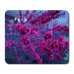 Pink Bloom Large Mouse Pad (rectangle)