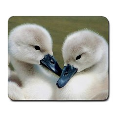 Baby Birds Large Mouse Pad (rectangle)