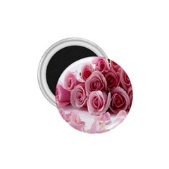 Pink Roses 1 75  Button Magnet by Contest1624092