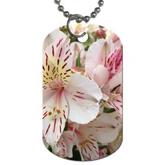 Flower Alstromeria Dog Tag (two Sided)  by ADIStyle