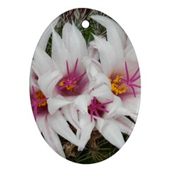 Bloom Cactus  Oval Ornament by ADIStyle