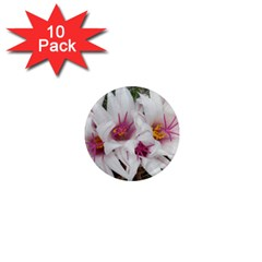 Bloom Cactus  1  Mini Button Magnet (10 Pack) by ADIStyle