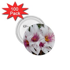 Bloom Cactus  1 75  Button (100 Pack) by ADIStyle