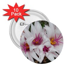 Bloom Cactus  2 25  Button (10 Pack)